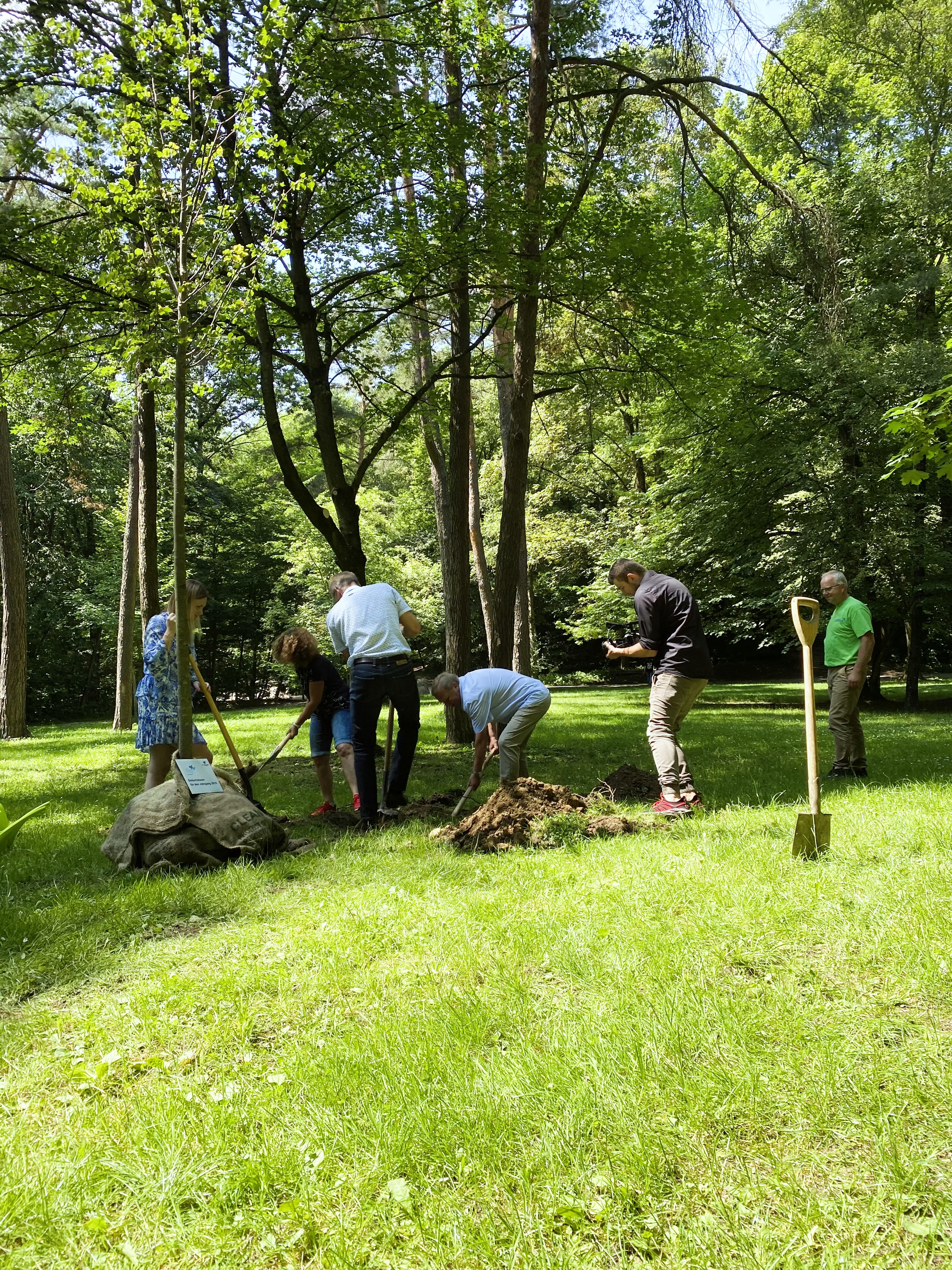 Bürgermeister Robert Pötzsch pflanzt gemeinsam mit Vertretern des Stadtrats im Rahmen des Geburtsbaumpflanzens eine Linde im Stadtpark