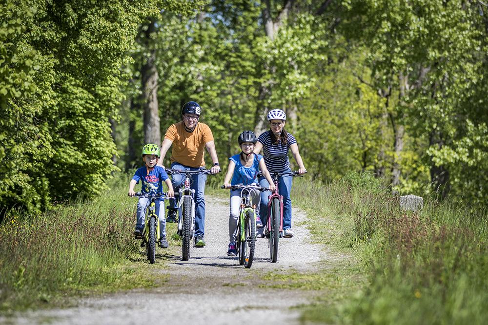 Eine vierköpfige Familie fährt am Inn Fahrrad